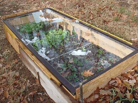 How To Make Cold Frames from Recycled Materials Mom Prepares
