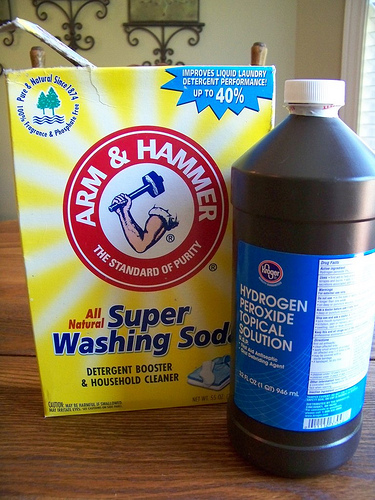 What is the best stain remover for old stains on carpet? - Yahoo