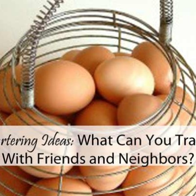 Bartering Ideas: What Can You Trade With Friends and Neighbors?