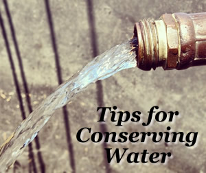 7 Easy Tips to Conserve and Recycle Water