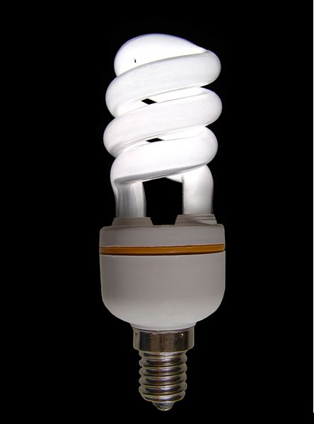 Energy-efficient bulbs use less energy and last longer than incandescent bulbs. Photo by Mattia Luigi Nappi