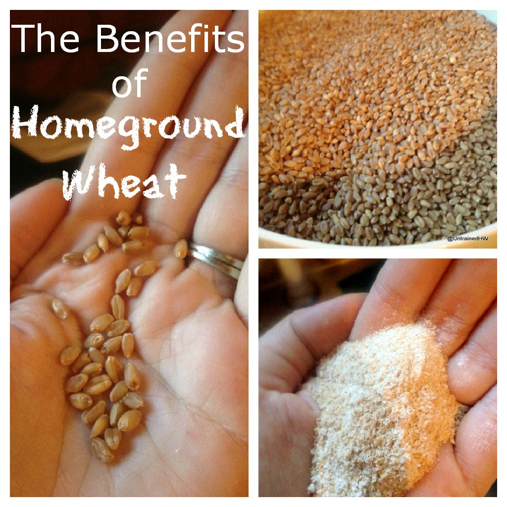 homeground wheat benefits collage
