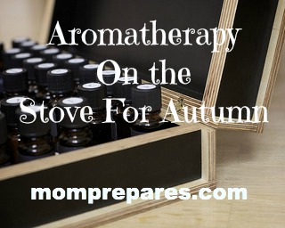 Aromatherapy On the Stove For Autumn: Cheaper and Healthier