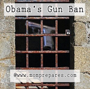 Obama's Gun Ban - original images by saavem and Ndubinkin. Cover design by Kate Singer.
