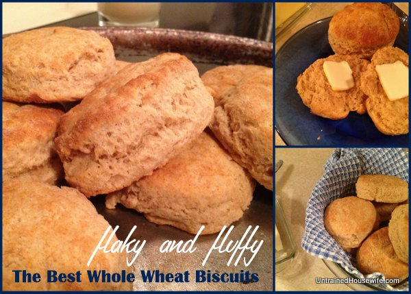 Best-Whole-Wheat-Biscuits