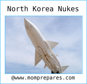 North Korea has nukes! Image by ziptrivia, cover design by Kate Singer.