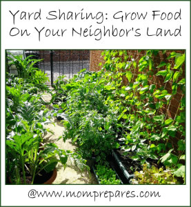 Yard sharing lets you grow food in unused local spaces. Photo: Steve R / CC by 2.0