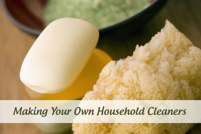 DIY Household Cleaners and Detergents