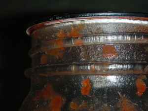 Check to see if canning lids have become loose. Image by Aprille Ross