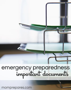 Emergency Preparedness Important Documents