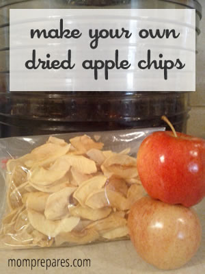 How to Make Dried Apple Chips