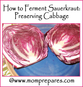 Use any color of cabbage or alternate for pretty sauerkraut. Photo: Tricia Edgar