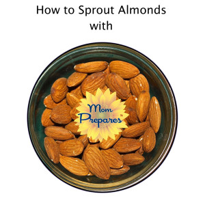 Raw almonds ready to soak for sprouting - Photo by arolenrock. Cover design by Kate Singer.