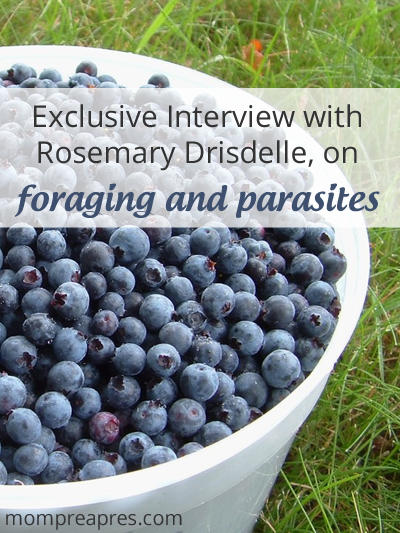 Foraging and Parasites