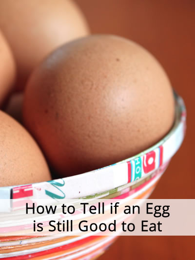 How to Tell if an Egg is Still Good to Eat