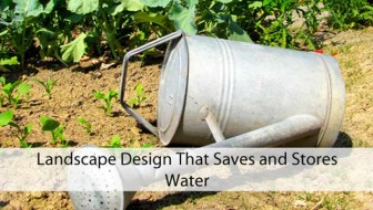 Landscape Design That Saves and Stores Water