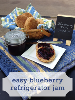 Blueberry Refigerator Jam Recipe - no canning required!