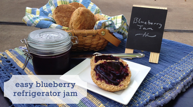 Easy Blueberry Jam Recipe you don't have to can. Just make and refrigerate!