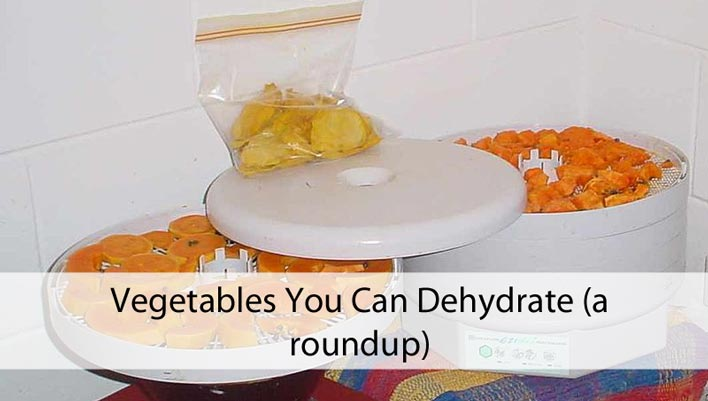 Vegetables You Can Dehydrate (a roundup)