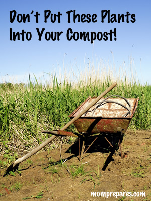 Types of plants to keep out of your compost pile.