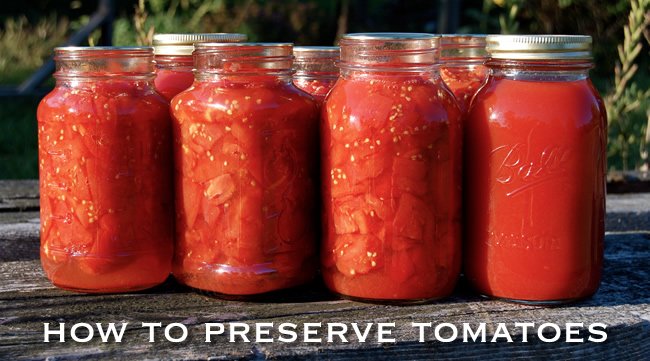 How to Preserve Tomatoes - Image Credit Andrew Beierle