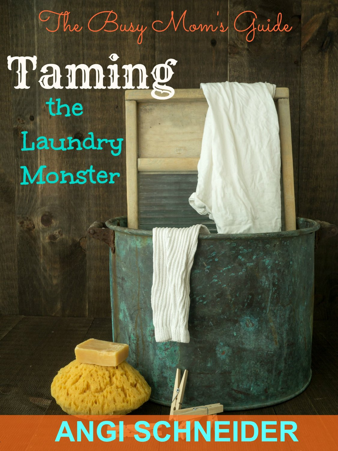Taming the Laundry Monster by Angi Schneider