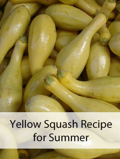Yellow Squash Recipe for Summer - Mom Prepares
