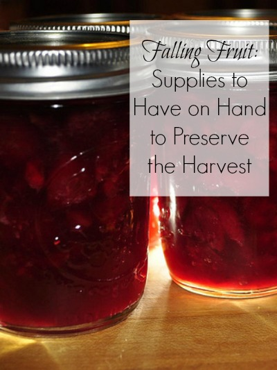 Jars, sugar, and fruit: some essentials for preserving the harvest. Photo: jeffreyw