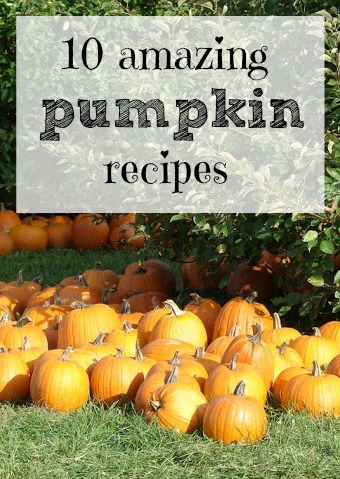 10 Amazing Pumpkin Recipes