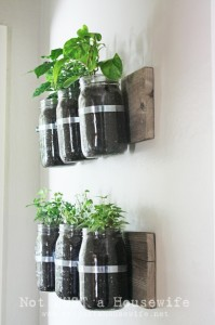 DIY Mason Jar Wall Planter