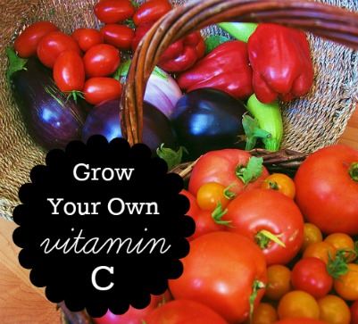 Grown Your Own Vitamin C: Vegetables High in Vitamin C