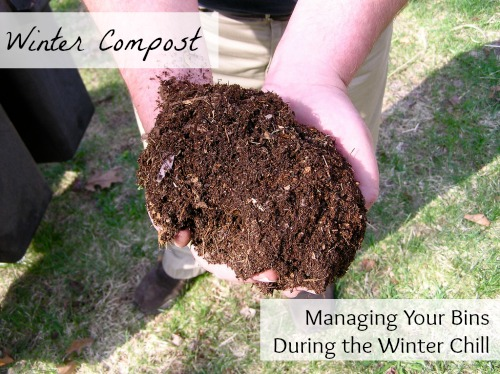 Winter Compost Managing Your Bins During the Winter Chill