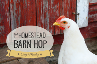 Click on over for the barn hop!