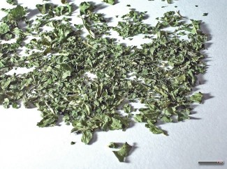 Dried nettles are perfect in teas and infusions! Photo by Rillke