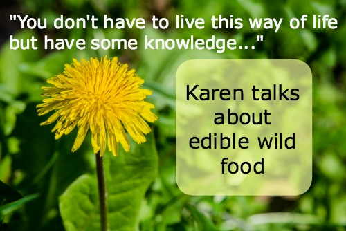 Let's Talk About Edible Wild Food | Podcast 2
