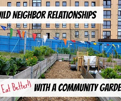 Building Neighbor Relationships with a Community Garden