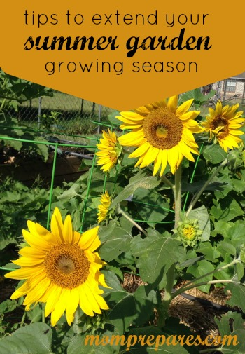 Tips to Extend Your Summer Garden Growing Season