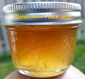 Queen Anne's lace jelly