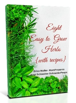 8 Easy to Grow Herbs and Recipes