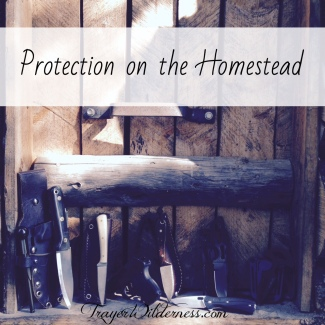 Protection on the Homestead - Tammy Trayer's Favorite Knives for Women