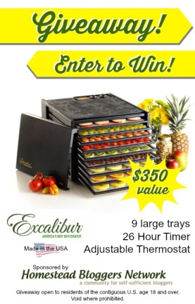Excalibur Dehydrator Giveaway at MomPrepares. $350 Value #Giveaway
