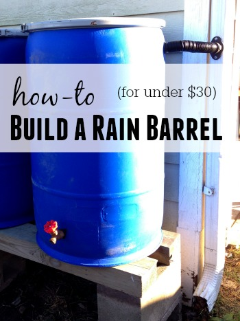 How to Build a Rain Barrel for Under 30 Dollars