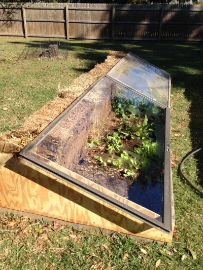 Cold Frame made of Straw Bales and Glass Doors