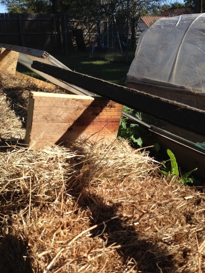 Blocks of wood to vent the cold frame.