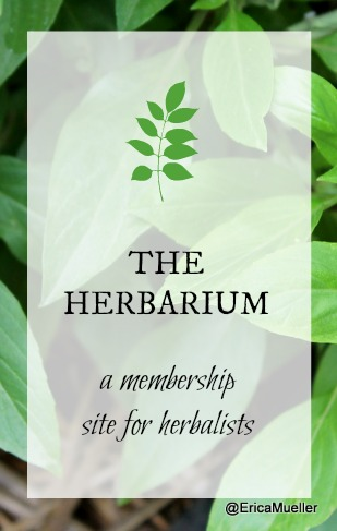 The Herbarium Herbal Membership Site Review