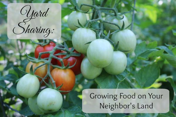 Yard Sharing Growing Food on Your Neighbor's Land