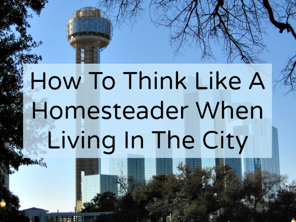 city homesteading