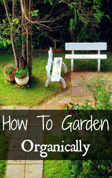 How To Have An Organic Garden | Podcast 44