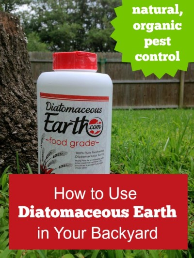 How to Use Diatomaceous Earth for Natural Pest Control
