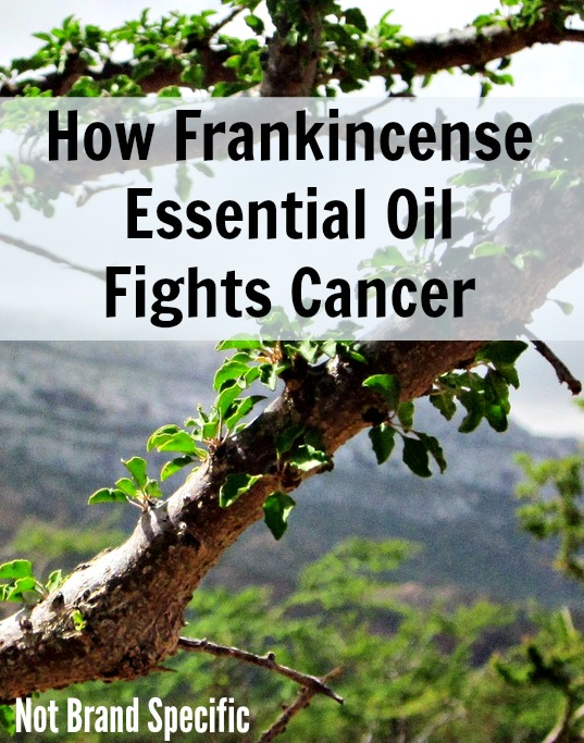 Using Essential Oils to Fight Cancer | Podcast 48